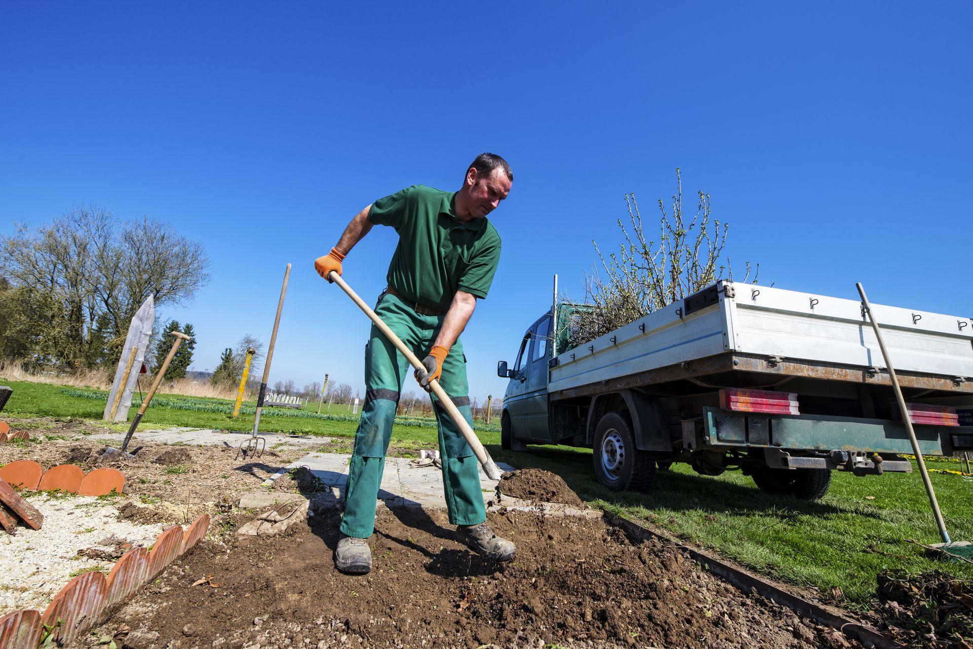 Dachbegrünung, Kompost, Hanglage, Vogel