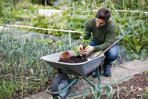 Garten, Kompost, Frühling, Umweltpartner Vogel AG